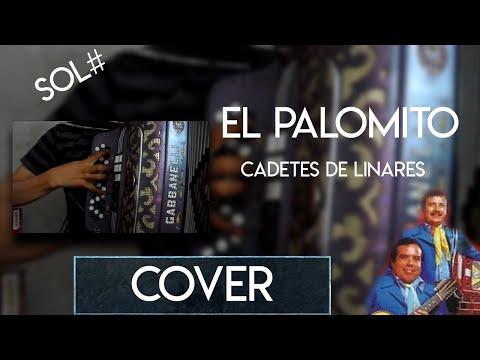El Palomito - Cadetes De Linares - Acordeon (Accordion)