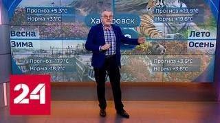 видео Погода в Москве на июнь 2018 – прогноз от Гидрометцентра. Какая будет погода в Москве и Московской области в начале и конце июня 2018