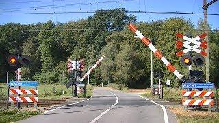 Spoorwegovergang Leuvenheim // Dutch railroad crossing