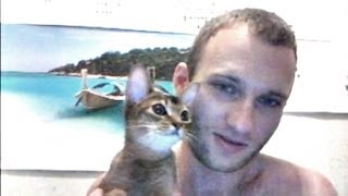 14.10.2012 Абиссинская кошка