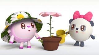 Малышарики - Барашик - ромашик 🌼- серия 117- обучающие мультфильмы для малышей 0-4