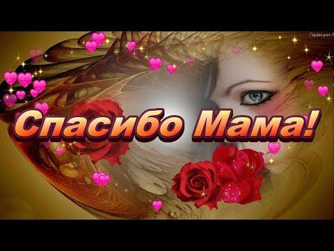 Спасибо Мама. Я ЛЮБЛЮ ТЕБЯ МАМА! Любимой маме! Красивые стихи для мамы.  МАМЕ от ДОЧЕРИ. МАМОЧКЕ