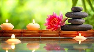 Relaxing Music 24/7, Reiki Music, Healing, Meditation, Sleep Music, Spa, Sleep, Study, Calm Music