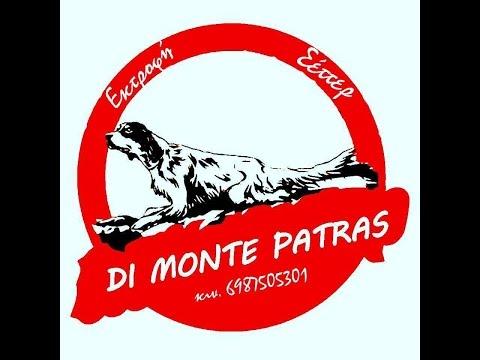 SETTER DI MONTE PATRAS