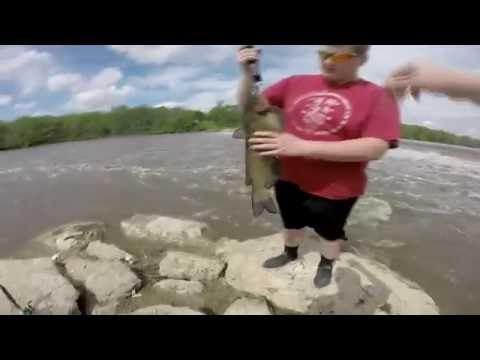 Quick Catfish At The Dam  | Illinois |
