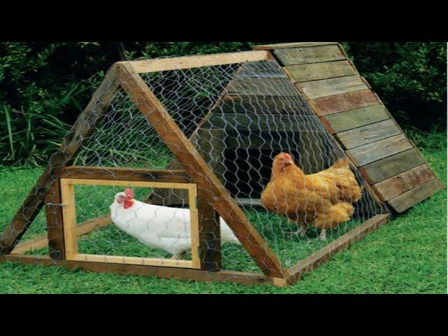 Modelo simples e lindo de galinheiro, como fazer um galinheiro,  how to make a chicken coop