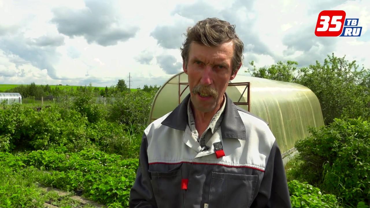 Погода на 9 мая в москве за последние 20 лет