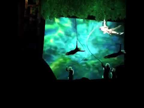 Disney Dream- Tarzan Scene
