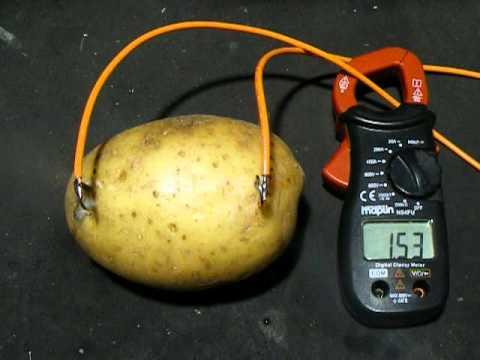 240v mains electric potato