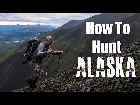 How To Hunt Alaska