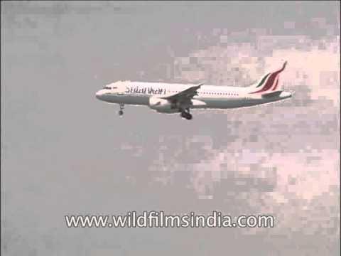 Sri Lankan Airlines Limited aircraft lands at IGI Airstrip, Delhi