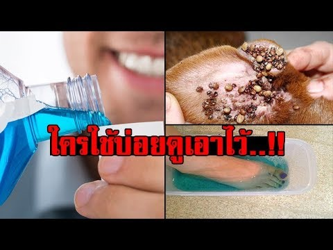 """10 คุณประโยชน์ของ """"น้ำยาบ้วนปาก"""" มีค่ามากกว่า """"ลมหายใจหอมสดชื่น"""""""