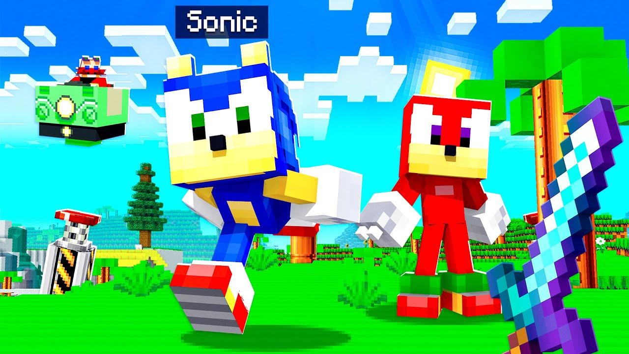 *NEW* SONIC Mod in Minecraft!