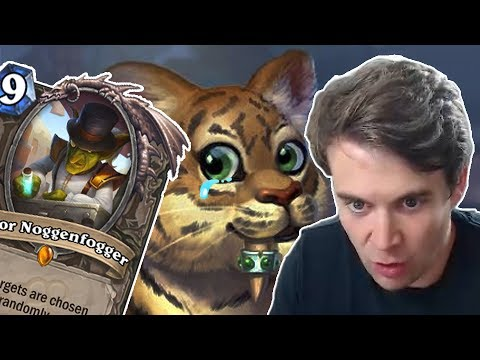 (Hearthstone) The Tragedy of the Mayor and the Cute Cat