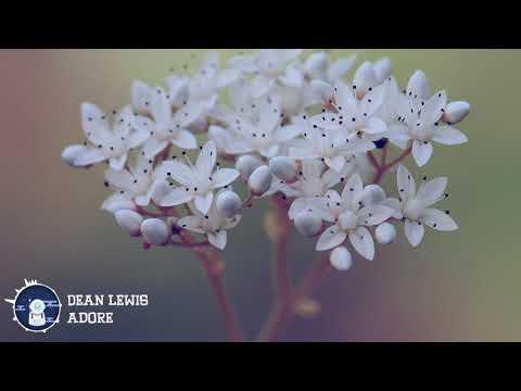 Dean Lewis - Adore