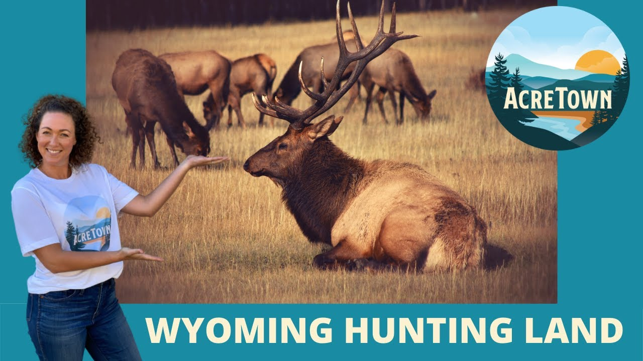 Wyoming Land For Sale By Owner | Hunter's Dream with Lake View + Access