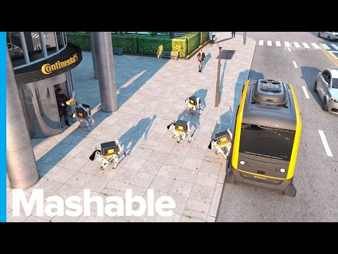 This Robot Delivery Dog Can Bring Your Parcel Right To Your