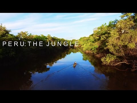 Peru: The Amazon Rainforest