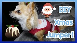 2 Minute Christmas Jumper for Dogs! Easy DIY Homemade Christmas Jumper for Your Dog!