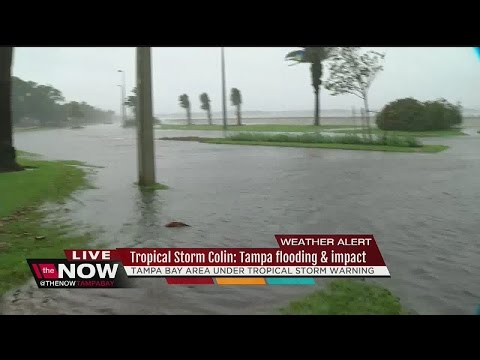 Tropical Storm Colin: Tampa impacted with flooding