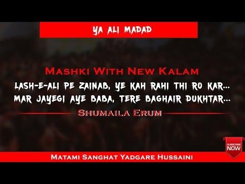Lash e ALI ع pe ZAINAB س ye keh rahi thi ro kar | New Kalam Mashki |