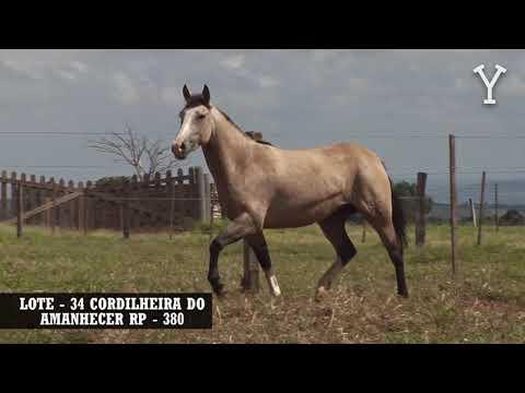 LOTE   34 CORDILHEIRA DO AMANHECER RP   380