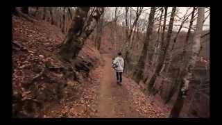 Accademia Aldo Galli - Nowadays video by Camilla Grasselli - Corso di Arti Visive