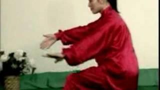 Tai-Chi-Chuan - Forma Mista em 48 Movimentos