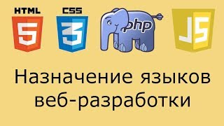 Назначение языков веб-разработки (html, css, php, js) на примере формы