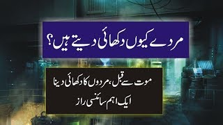 Top Brain Science and end of time |M Imran Adeeb | End of world