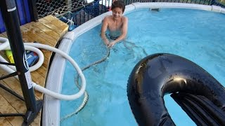 KIDS swimming with a LETHAL SNAKE in the Pool