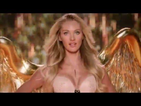 Видео, VSFS 2014 -  Gilded Angels