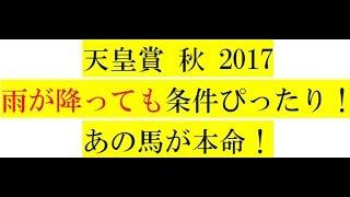 天皇賞秋2017【最終予想】雨が降っても条件ぴったり!あの馬が本命!