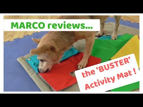 MARCO reviews... The Buster Activity Mat!