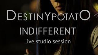 Destiny Potato | Indifferent | Live Studio Session