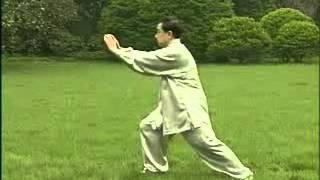 master feng rulong 冯如龙 traditional yang style taijiquan 85 fu zhongwen