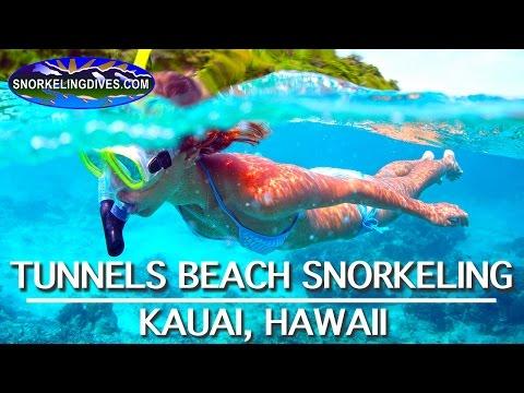 Best Tunnels Beach Snorkeling | Kauai