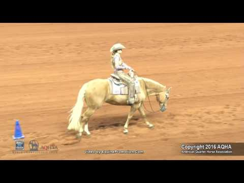A Judges Perspective: 2016 AQHYA Western Riding World Champion