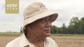 Thai farmers asked to delay rice crops due to drought