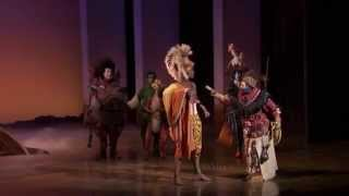 The Lion King on Broadway's 17 Birthday