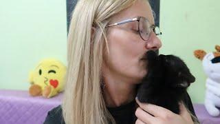 VLOG Собаки , кошки,  дети / Мы есть а Акинаторе / Кира уезжает / Покупки для Слайма