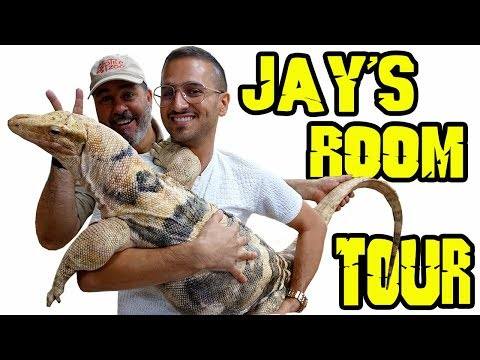 Jay's REPTILE Room Tour