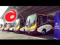 Auto 2017 | Nuevos buses Hyundai para Veguzti