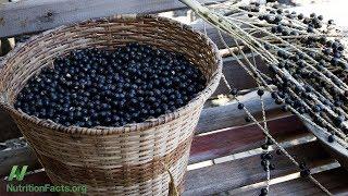 Antioxidační účinky acai ve srovnání s jablky