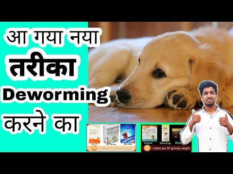Dog care - Deworming by pomtoy anurag