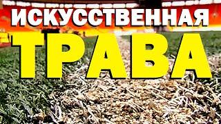 Галилео. Искусственная трава(, 2016-07-04T08:00:01.000Z)
