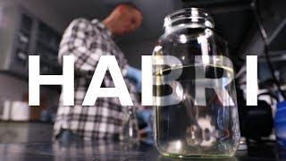 Harmful Algal Bloom Research Initiative thumbnail