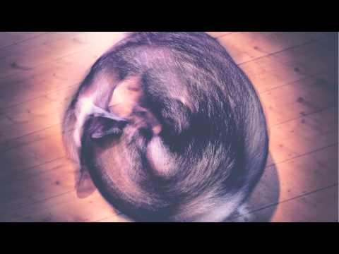Kate Tempest - 'Circles' (Mike Skinner Remix)