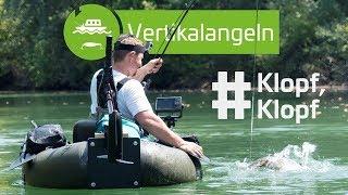 Klopfen Auf Wels Mit Würmern, Muscheln Und Co. | Www.zeck-fishing.com