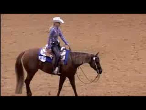 AQHA SELECT WORLD SHOW WESTERN PLEASURE 2008